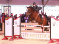 2. Rang Springen f++r Lea Wipraechtiger mit Quesac,  Team Haras National Avenches